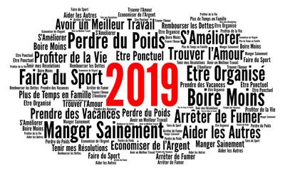Résolutions 2019 nuage de mots