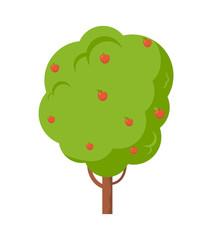 Apple Tree Full of Fruit Isolated Cartoon Icon