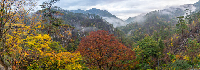 Panorama view of beautiful autumn with fog on mountain