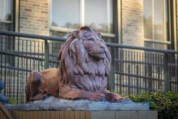 Lion statue in front of building
