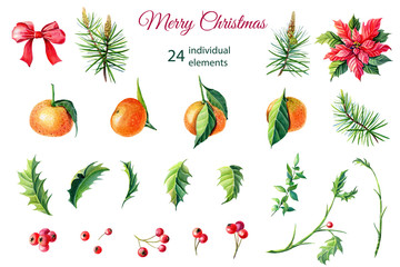 Watercolor Merry Christmas elements.Red poinsettia flowers,Holly,leaves,tangerines,berries,pine,spruce,green twigs on white background.