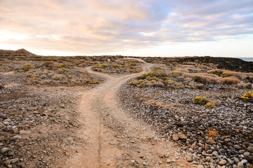 Foto op Canvas Zalm Dirt road desert