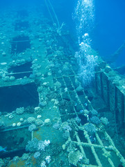Wreck of passenger ship Salem Express at the bottom of Red Sea in Egypt.