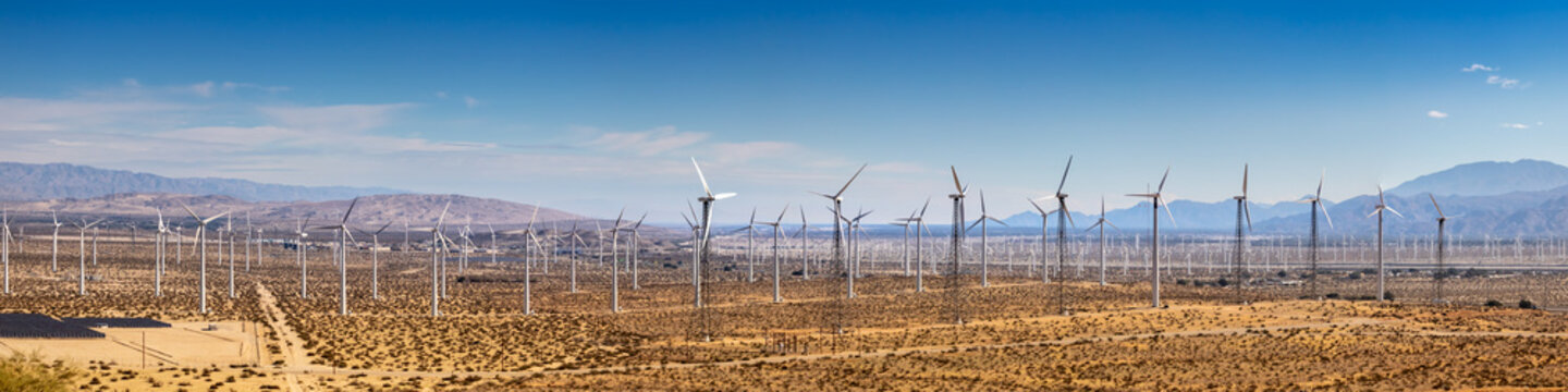 Panorama of Wind Farm in Palm Springs CA