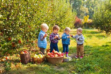 Cute children standing in autumn apple garden