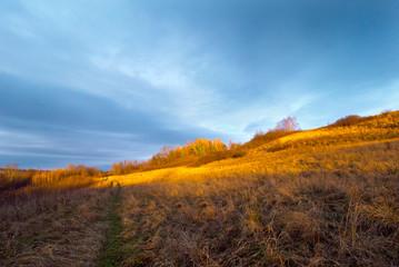 Jesienny krajobrazy pól i zadrzewień w świetle zachodzącego słońca