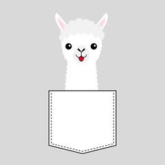 Llama alpaca face head in the pocket. Cute cartoon animals. Kawaii character. Dash line. White and black color. T-shirt design. Baby gray background. Isolated. Flat design.