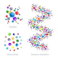 Structure of protein, peptides, amino acids, vector