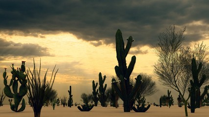 Sunset in the Desert with Cacti 3d rendering