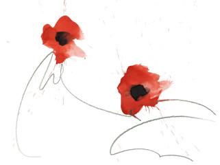 zwei gemalte Aquarell Mohn Blumen mit gekritzel gezeichneten Stielen isoliert freigestellt auf weißem Hintergrund, Textfreiraum