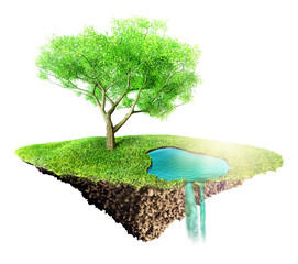 green grass island with tree and water