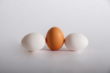 ei kompossiton drei eier