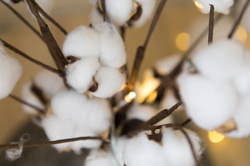 Cotton plant branches with led lights