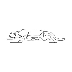 Continuous one line drawing of puma vector illustration. Wild animal isolated on white background.