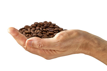 Palm of roasted coffee beans pile in hand isolated on white background