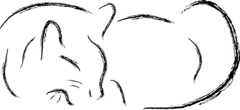 Sumi-e sleeping cat
