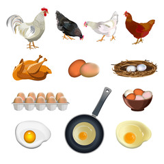 Chicken farm set