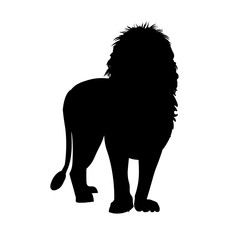 Silhouette of african lion