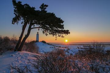 Hiddensee Winter