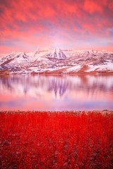 Poster Lichtroze Vertical red dawn winter reflection in the Wasatch Mountains, Utah, USA.
