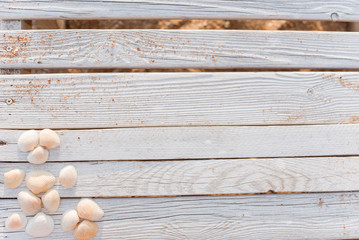 Seashells and some sand on wooden boards painted in white paint.