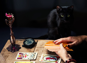 A fortune teller with a black cat lays out the tarot cards. Selective focus.