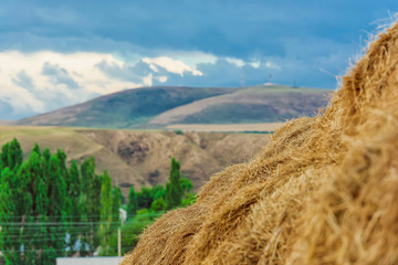 A stack of hay. Golden straw on the background of mountains and blue sky. Bales of grass for animal feed. Yellow hay and blue sky with clouds. beautiful summer landscape.
