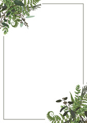 Decorative golden rectangular frame with eucalyptus, fern and boxwood branches isolated on white. For wedding invitations, vignettes, postcards, brunia, posters, documents, diplomas