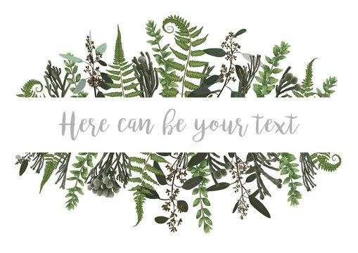 Vector illustration of a frame with green leaves of a forest fern, boxwood and eucalyptus, brunia. Pattern for wedding invitations, greeting cards, banners, certificates