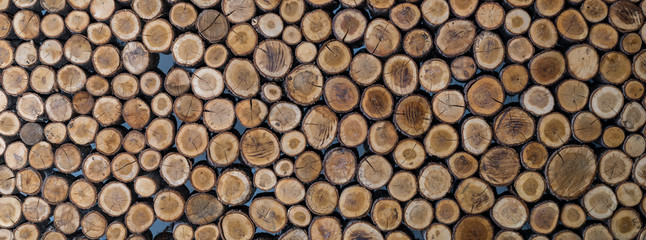 Stacked wood logs as texture, background, panorama