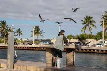 Man cutting up a fish on the dock with seagulls flying around