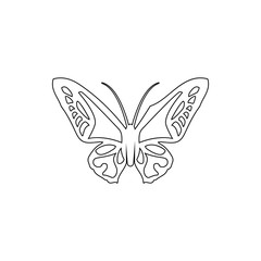 butterfly icon. Element of insect for mobile concept and web apps icon. Thin line icon for website design and development, app development