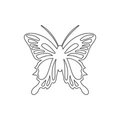 butterfly tail icon. Element of insect for mobile concept and web apps icon. Thin line icon for website design and development, app development