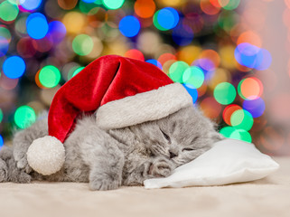 Cute kitten in red santa hat sleep on pillow with Christmas tree on background
