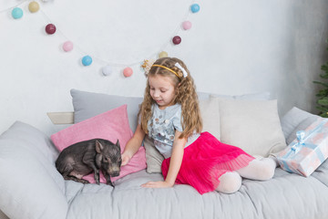 New Year and Christmas story about a little girl in festive clothing and mini pig. Little Pig symbol of 2019. Black small pig as symbil for 2019 in Chinese horoscope. Pet and cute child.Friendship and