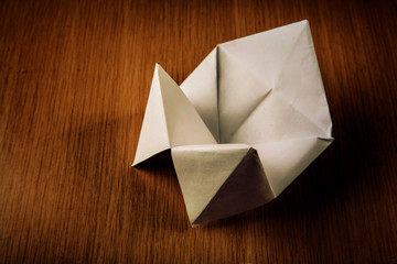 Paper cootie catcher fortune telling game, blank for text