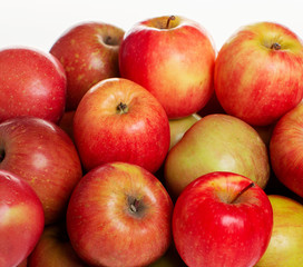 Red Apples on White Backdrop
