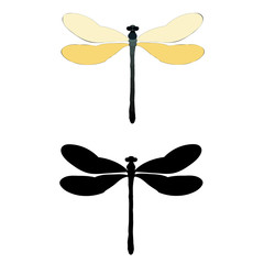 isolated, dragonfly flying, silhouette
