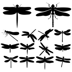 dragonfly silhouettes, insects, on white background