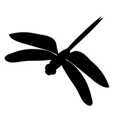 isolated silhouette of a flying dragonfly