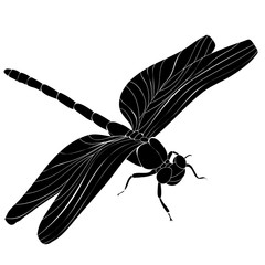 dragonfly flies, insect, silhouette
