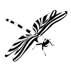isolated black and white silhouette of a flying dragonfly