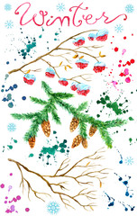 Design set with winter tree branches, conifer, red berries, paint drops isolated on white. Natural hand painted watercolor illustration, cut out