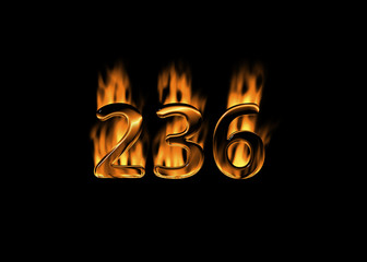 3D number 236 with flames black background