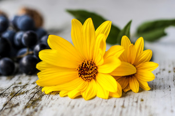 Photo-of-yellow-flowers-rustic