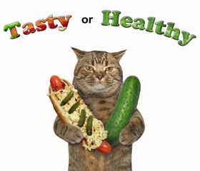The cat holds a hot dog in one paw and big cucumber in the other. Tasty or healthy. White background.