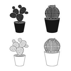 Isolated object of cactus and pot symbol. Set of cactus and cacti vector icon for stock.