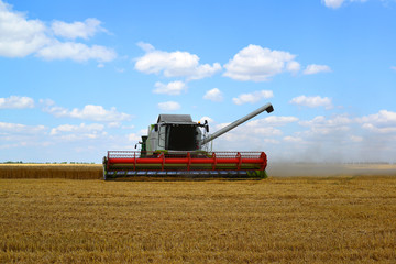 Beautiful harvester working in the field in Russia