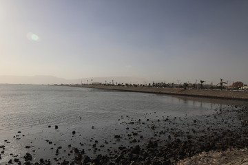 Sluts in Suez