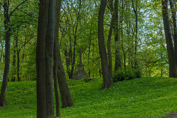 monument among trees in the park, Tarnobrzeg, Poland
